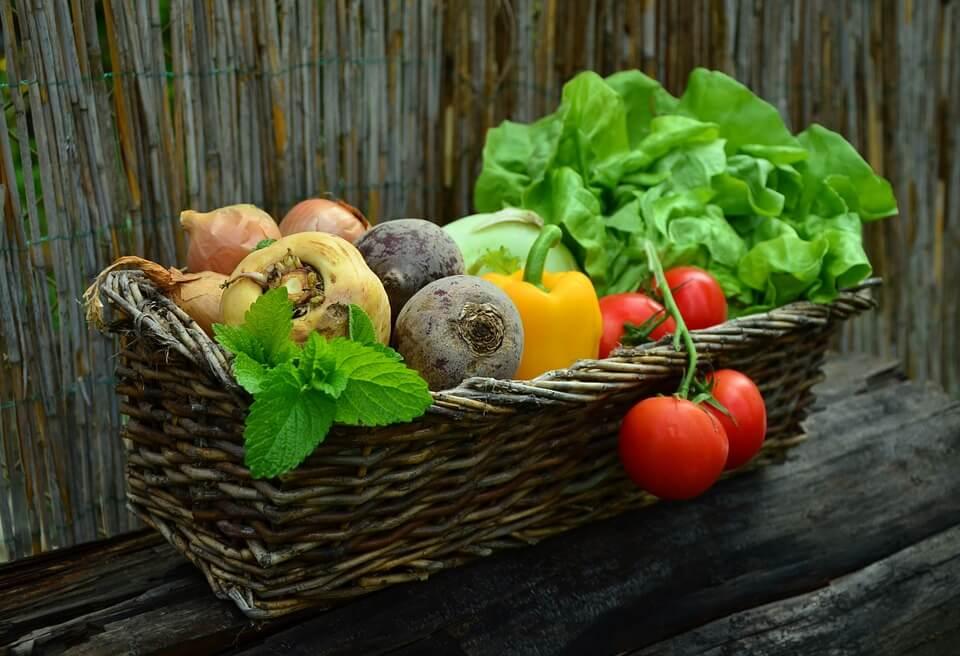 Hortas domésticas contra a má alimentação