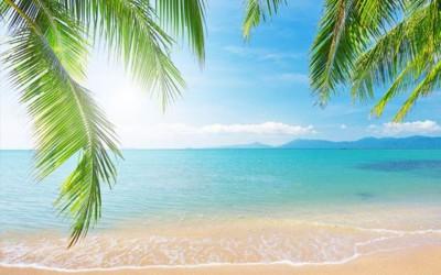 Como evitar insolação e desidratação no verão?